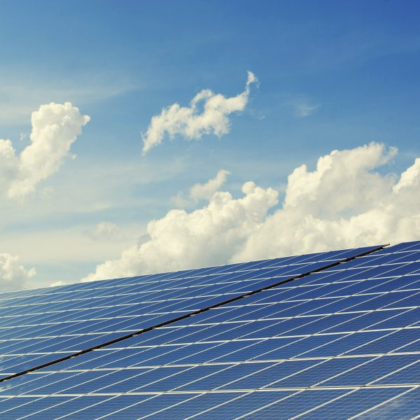 Considering solar panels – everything you need to know!